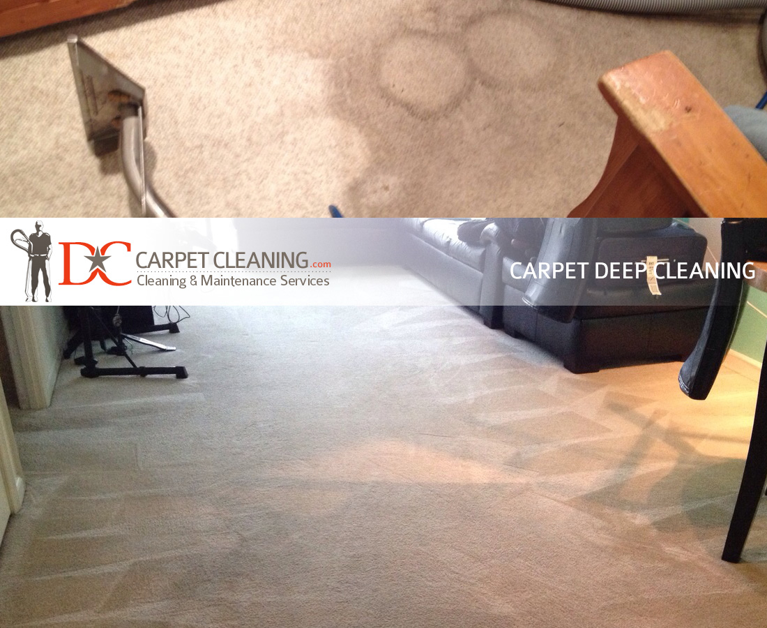DC Carpet Cleaning image 11
