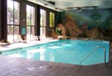 Advanced Pool Services, Inc. image 3