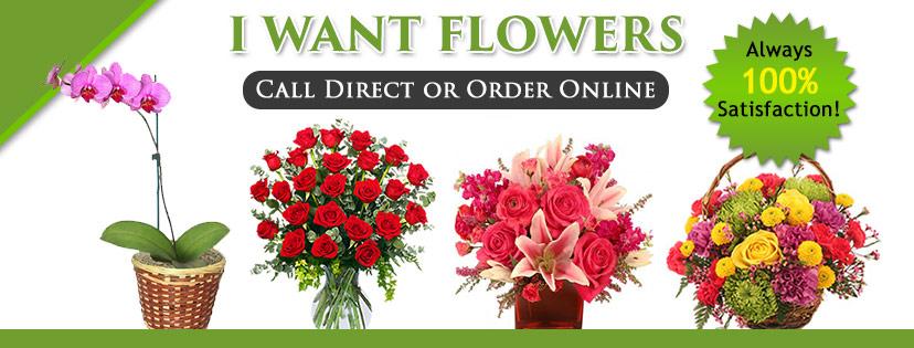 I Want Flowers image 0