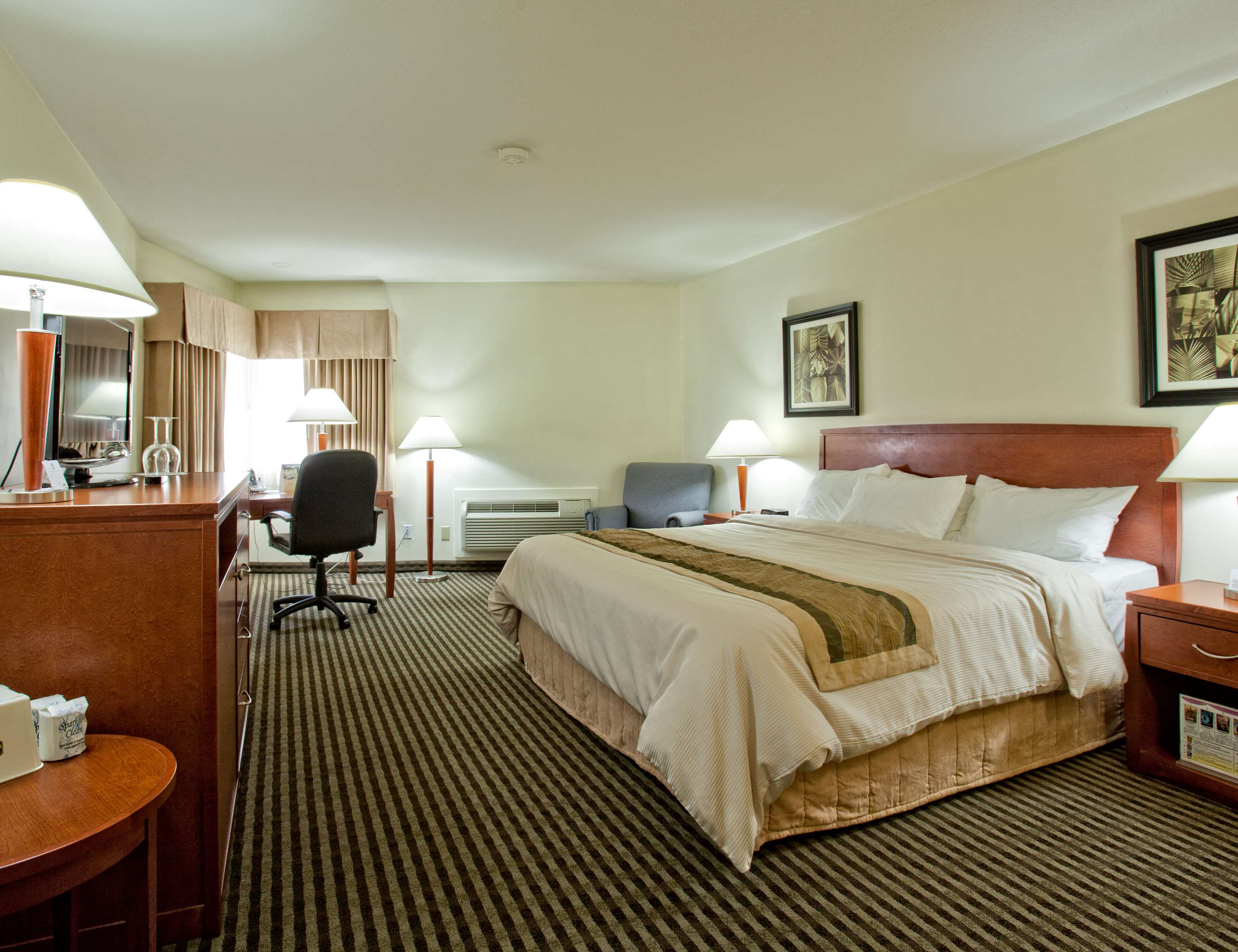 Best Western Rainbow Country Inn in Chilliwack: King Business Class