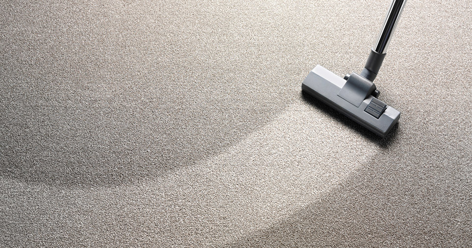 image of Lake Shore Carpet and Tile Cleaning