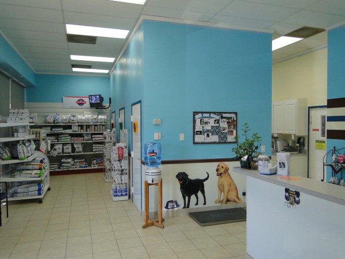 VCA Pet Doctor Animal Hospital in Richardson, TX, photo #8