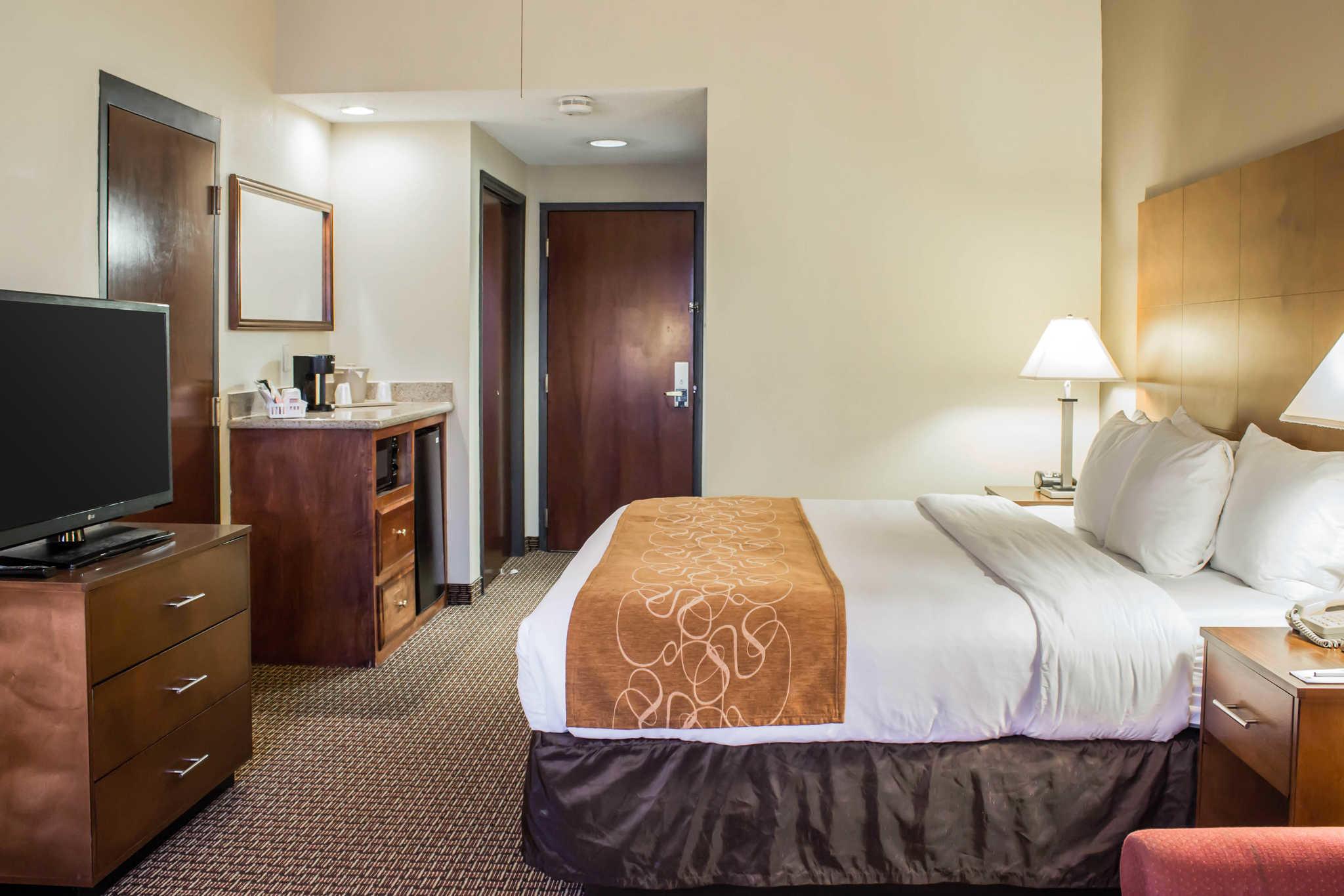 Comfort Suites Raleigh Durham Airport/RTP image 6