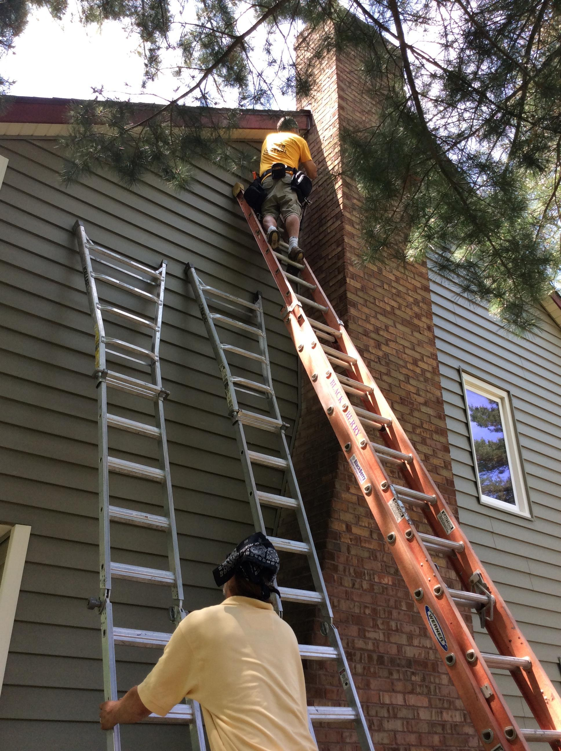 how to get rid of woodpeckers on cedar siding