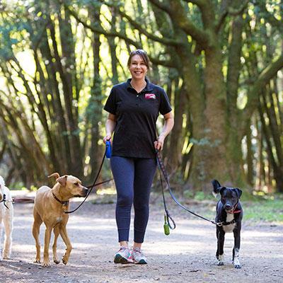 Fetch! Pet Care image 5