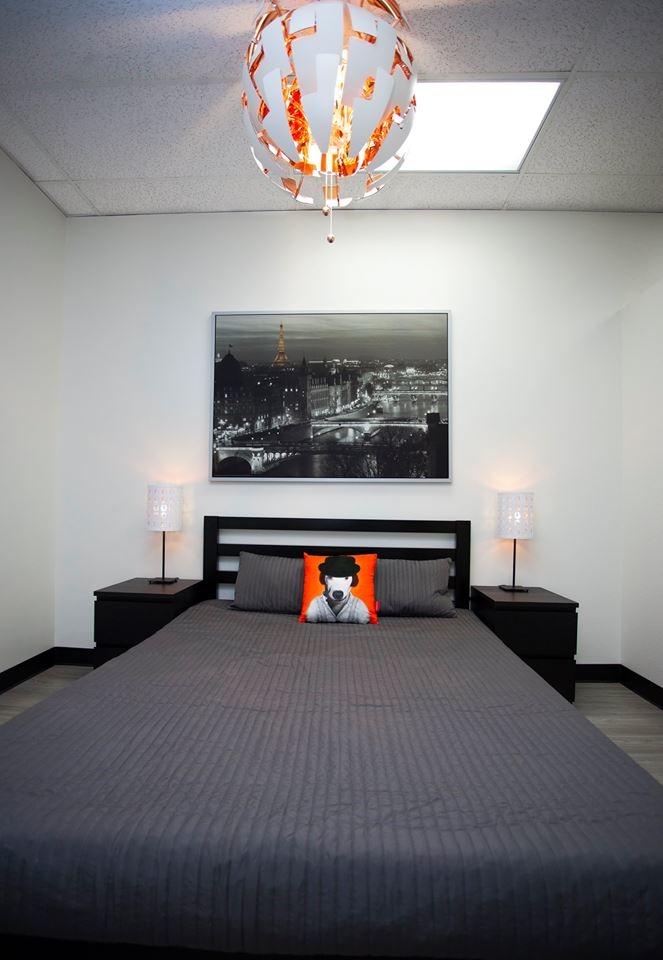 D Pet Hotels Los Angeles image 3