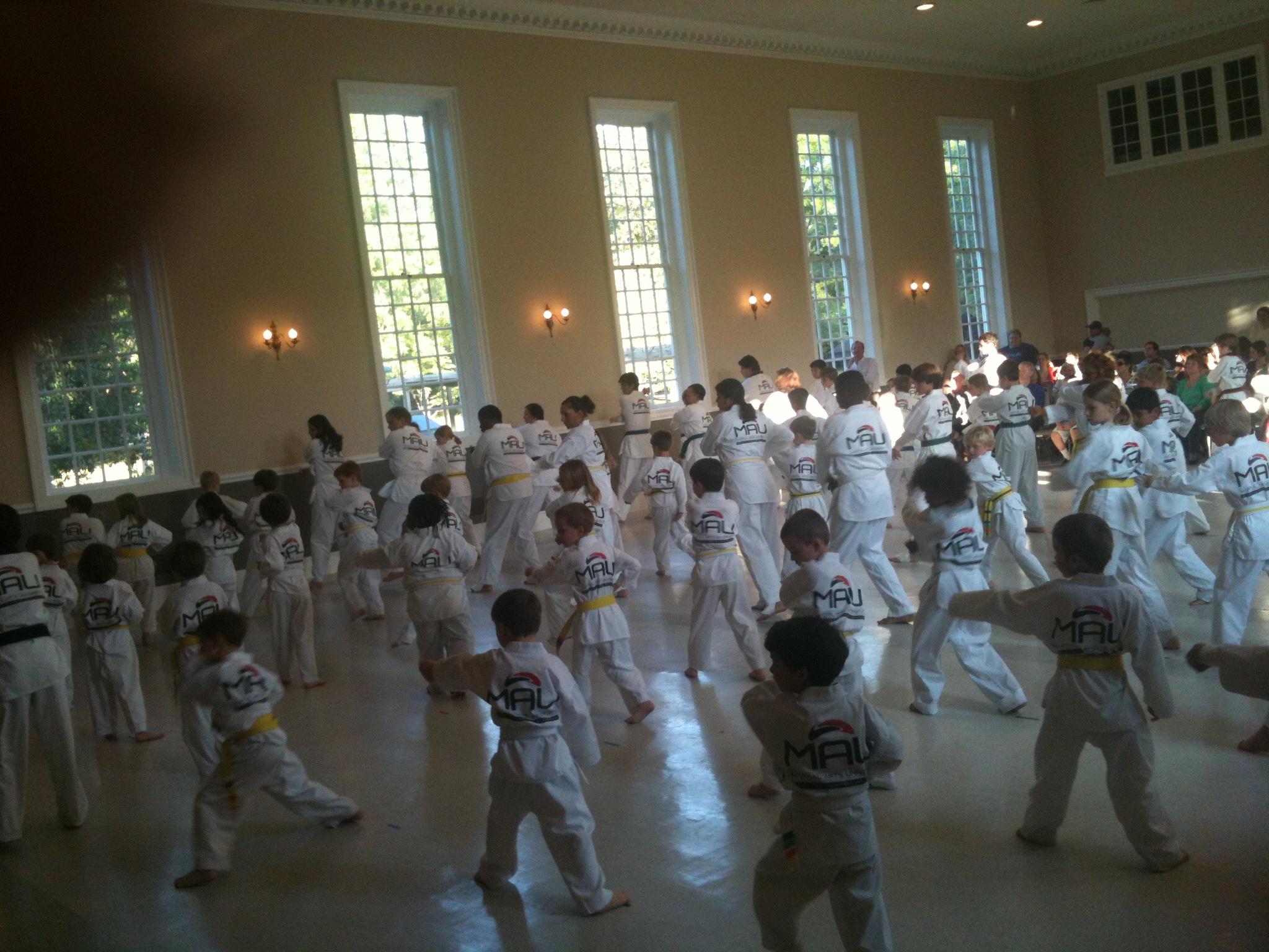 Martial Arts University image 2