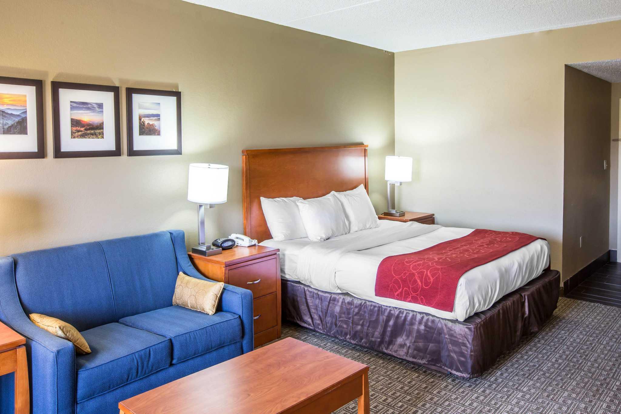 Comfort Suites Mountain Mile Area image 20