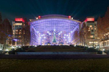 Gaylord National Resort & Convention Center image 13