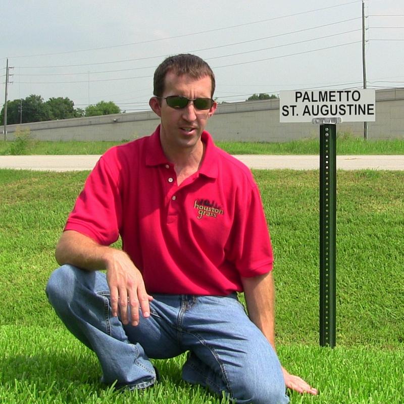 Houston Grass South image 7