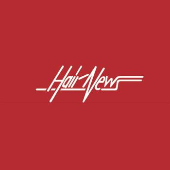 Logo von HAIR NEWS Haarkosmetik | Stephanie Eggers-Glüß