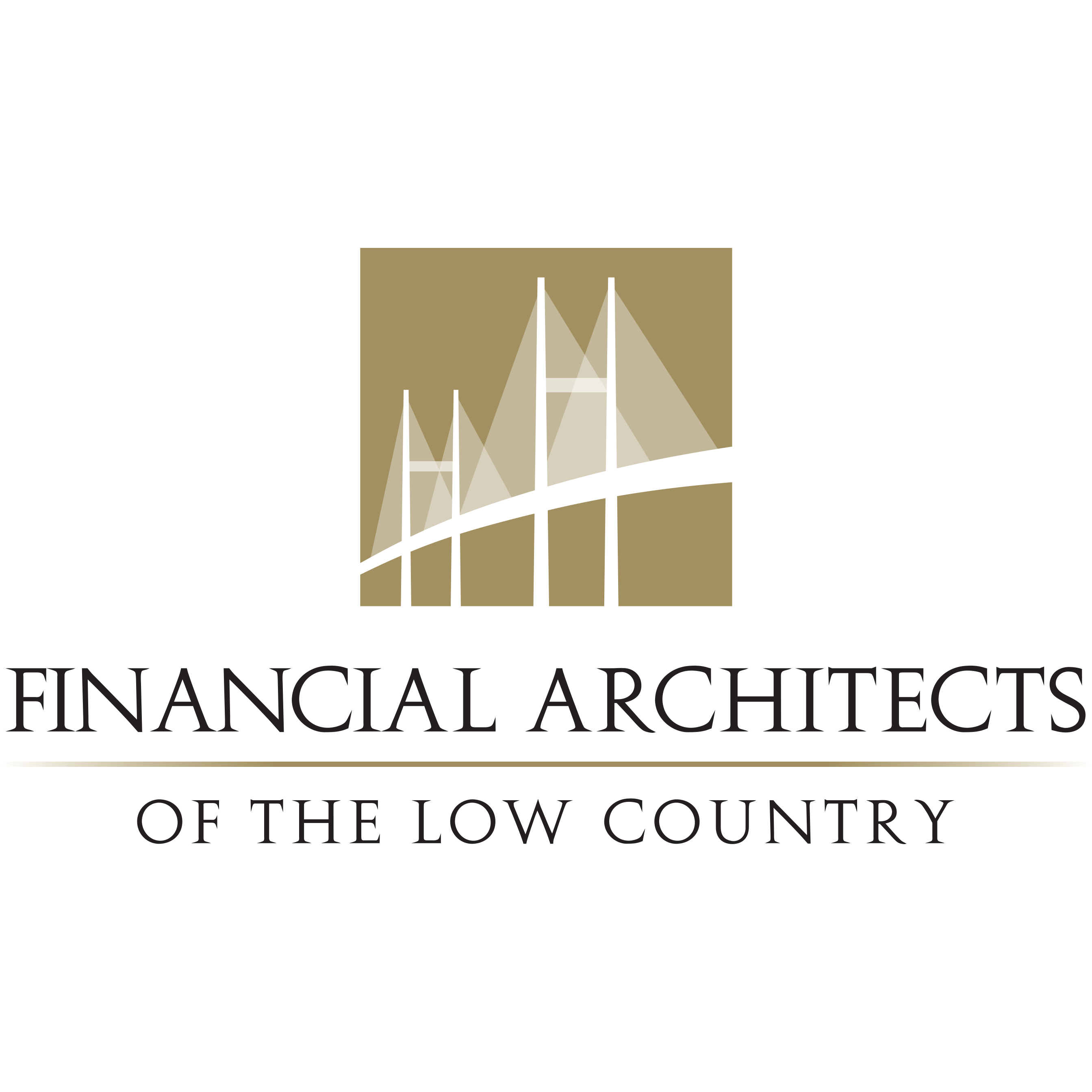 Financial Architects of the Low Country image 3