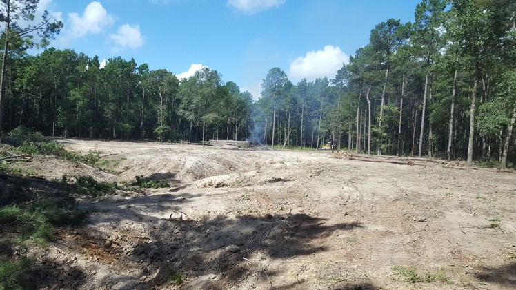 Texas Ace Land Clearing   Land Clearing Houston image 17