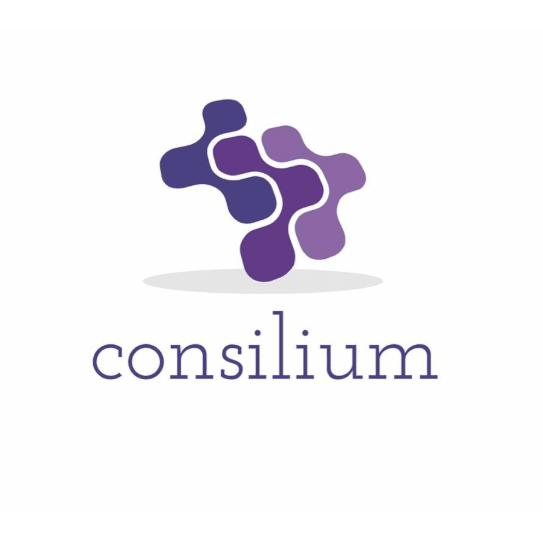 Consilium Systems Ltd