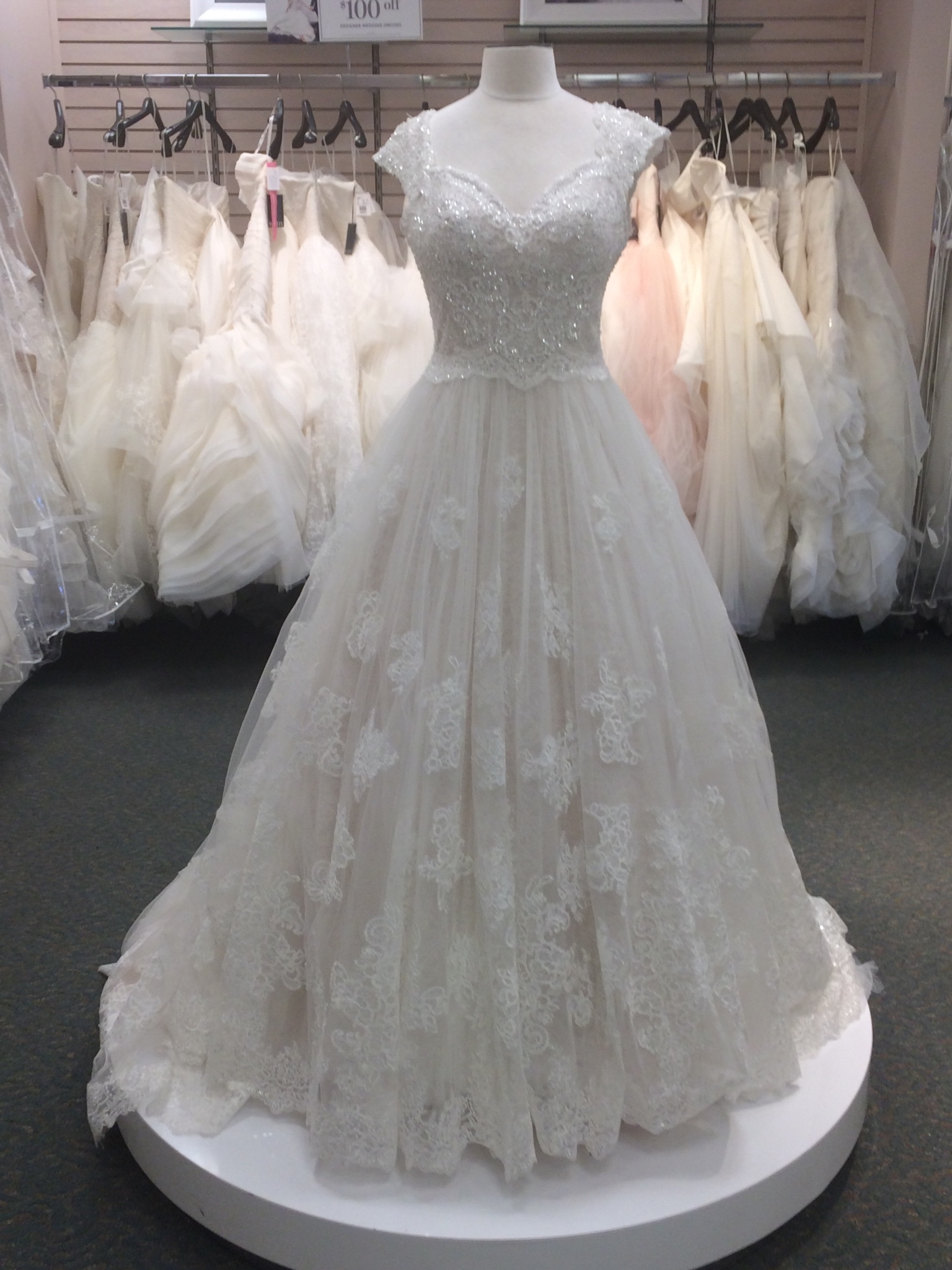 David S Bridal 1820 Gunbarrell Road Suite 400 Gunbarrell