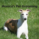 Monica's Pet Grooming image 1