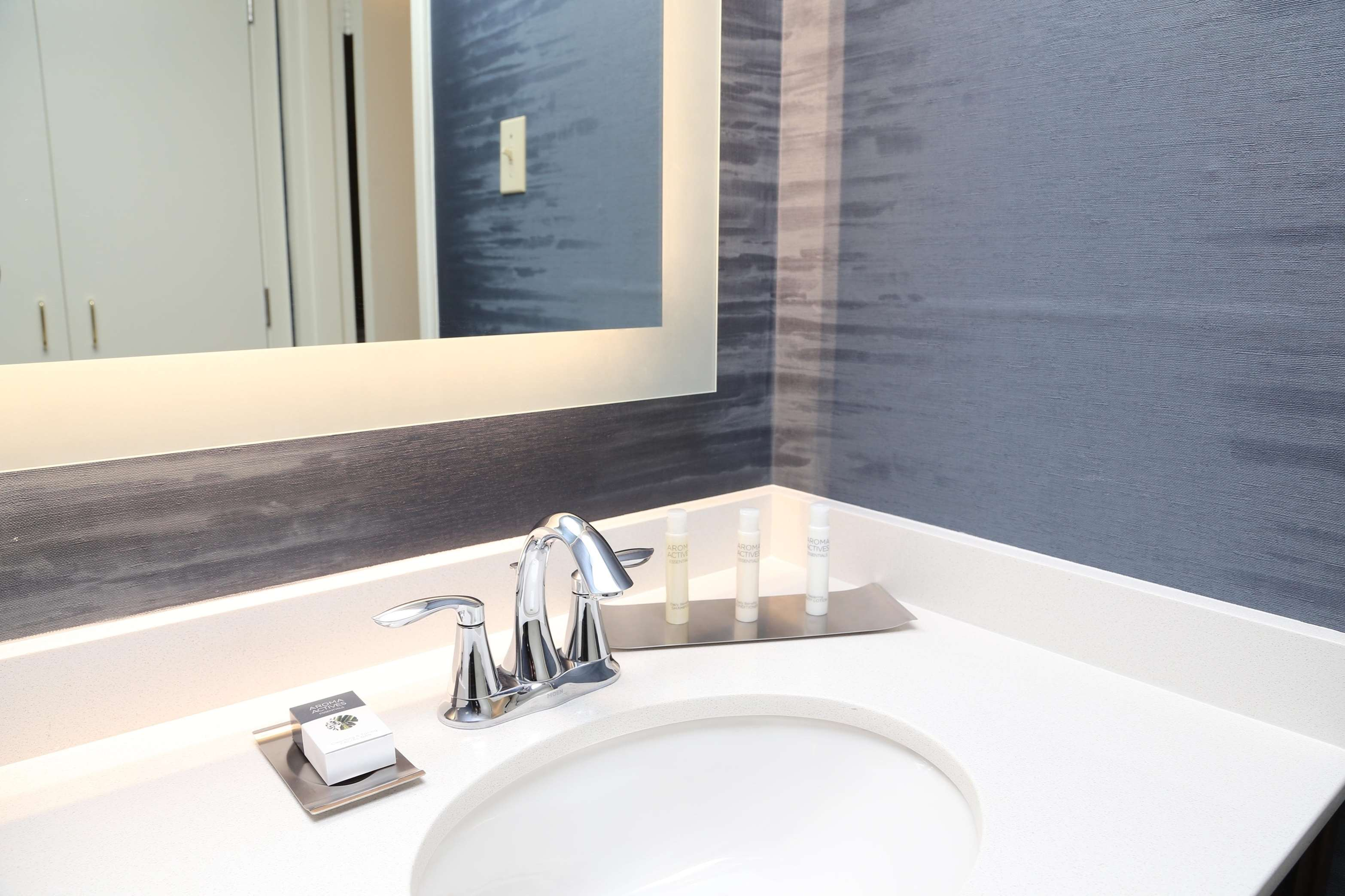 DoubleTree by Hilton Boston - Andover image 19