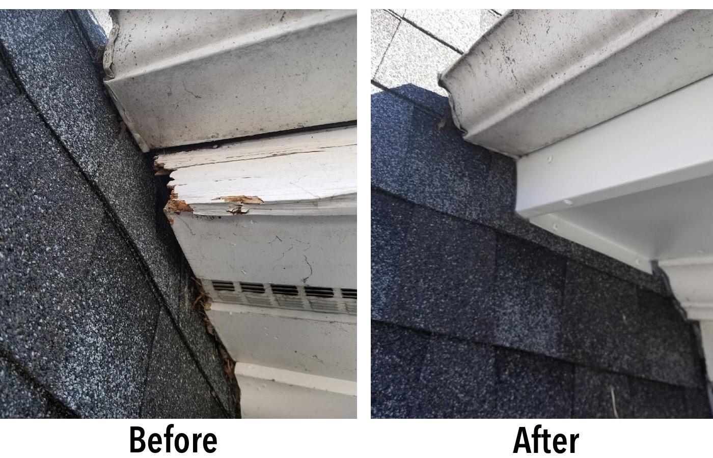 NJ Pest Control image 15