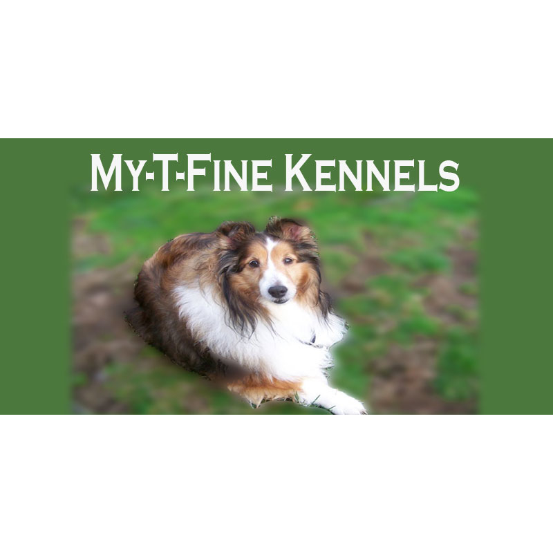 My-T-Fine Kennels - Delaware, OH - Pet Obedience Training