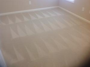 Simply Clean Carpet Care image 4