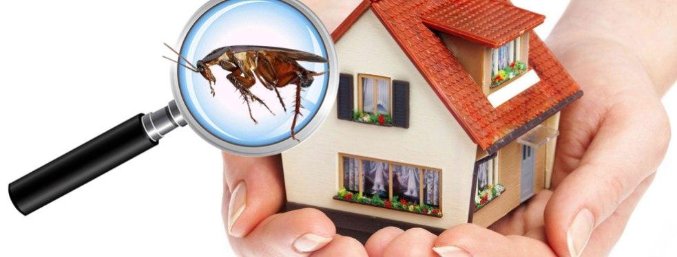 Family Pest Control image 0