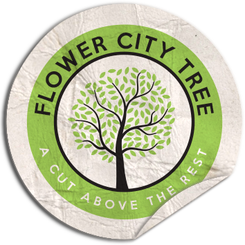 Flower City Tree
