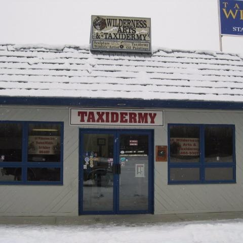 local taxidermy Advanced taxidermy is regarded at the world's most accurate fish replica and fish reproductions studio advanced taxidermy also has.