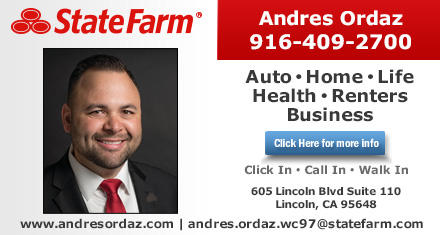 State Farm: Andres Ordaz image 0