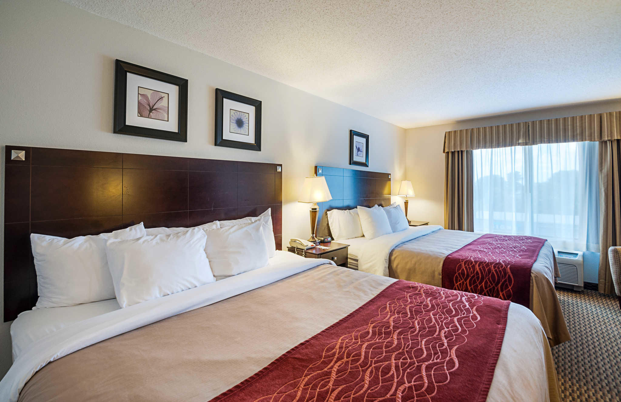 Comfort Inn & Suites Cambridge image 0