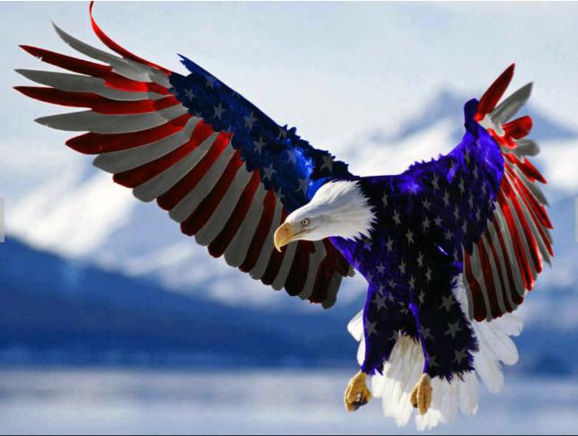 American Bail Bonds image 2