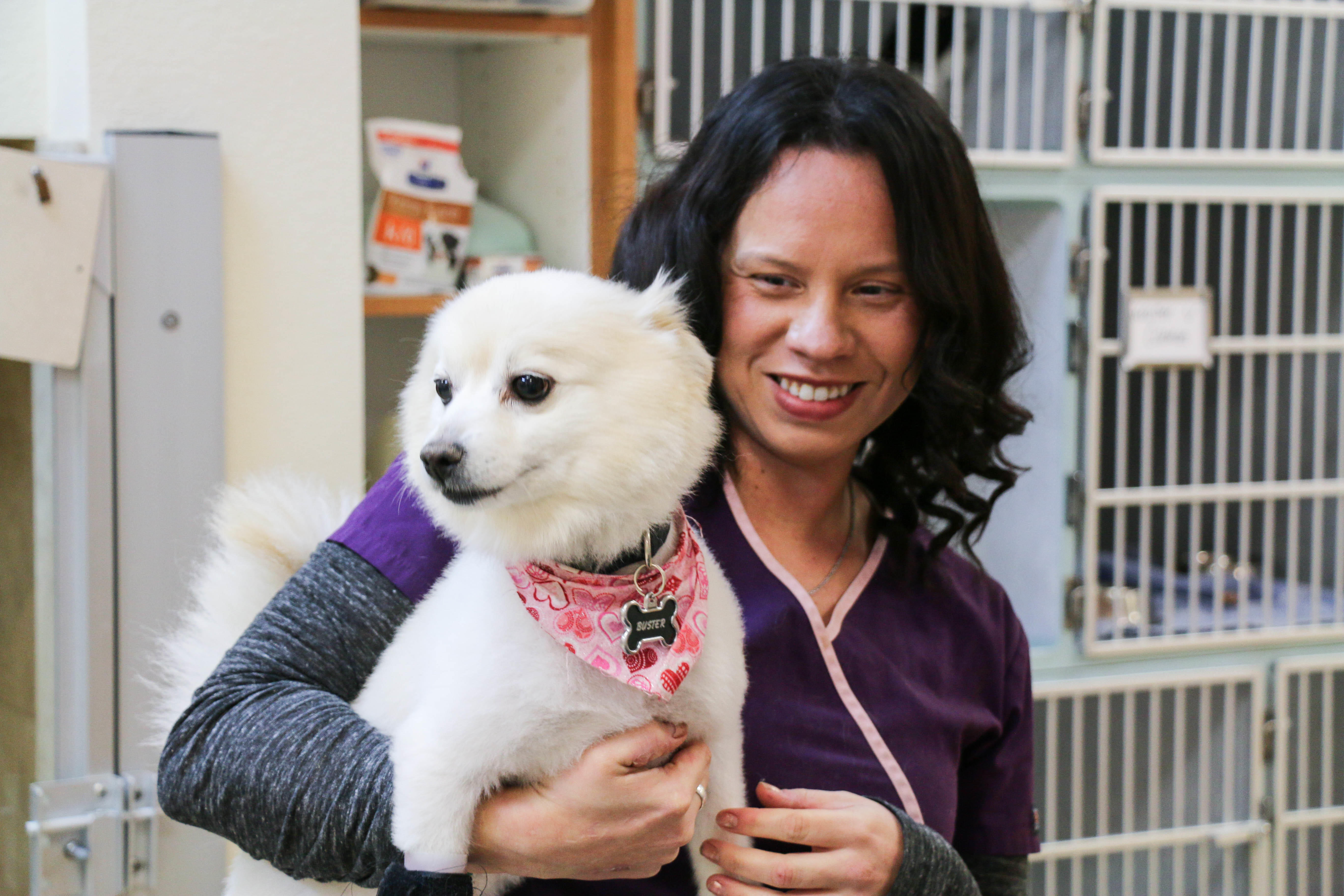 All Creatures Veterinary Center image 5