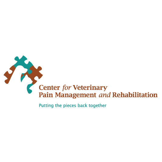Pain Management and Rehab