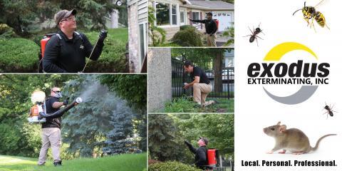 Exodus Exterminating Inc image 0