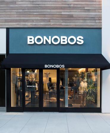 Image 2 | Bonobos