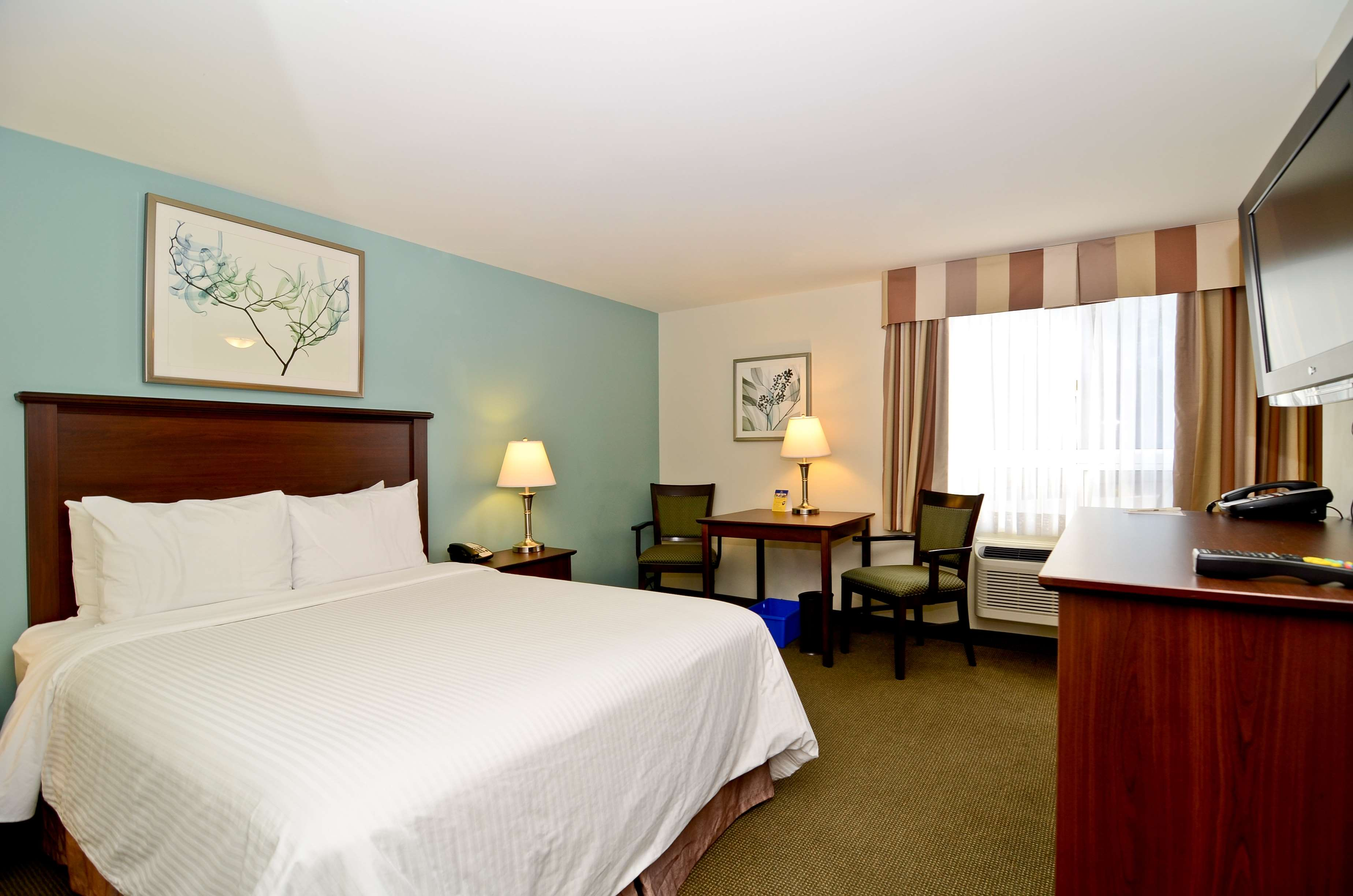 Best Western Plus Chocolate Lake Hotel Halifax Ns