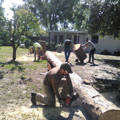 Climbin For Christ Tree Services and Bee Removal image 3
