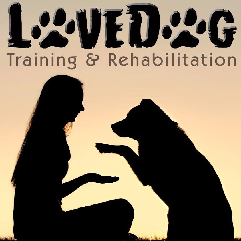 Lovedog- Vero Beach - Vero Beach, FL 32966 - (772)323-4826 | ShowMeLocal.com