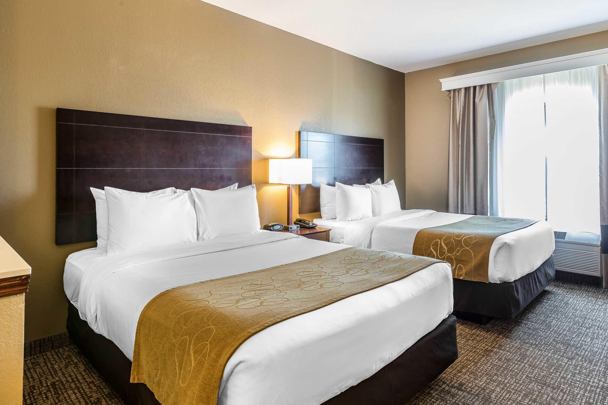 Comfort Suites North Fort Wayne In Company Information