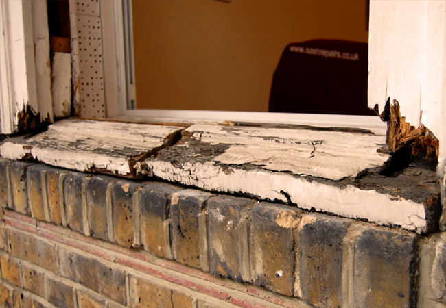 Aruba Home Repair and Improvement image 1