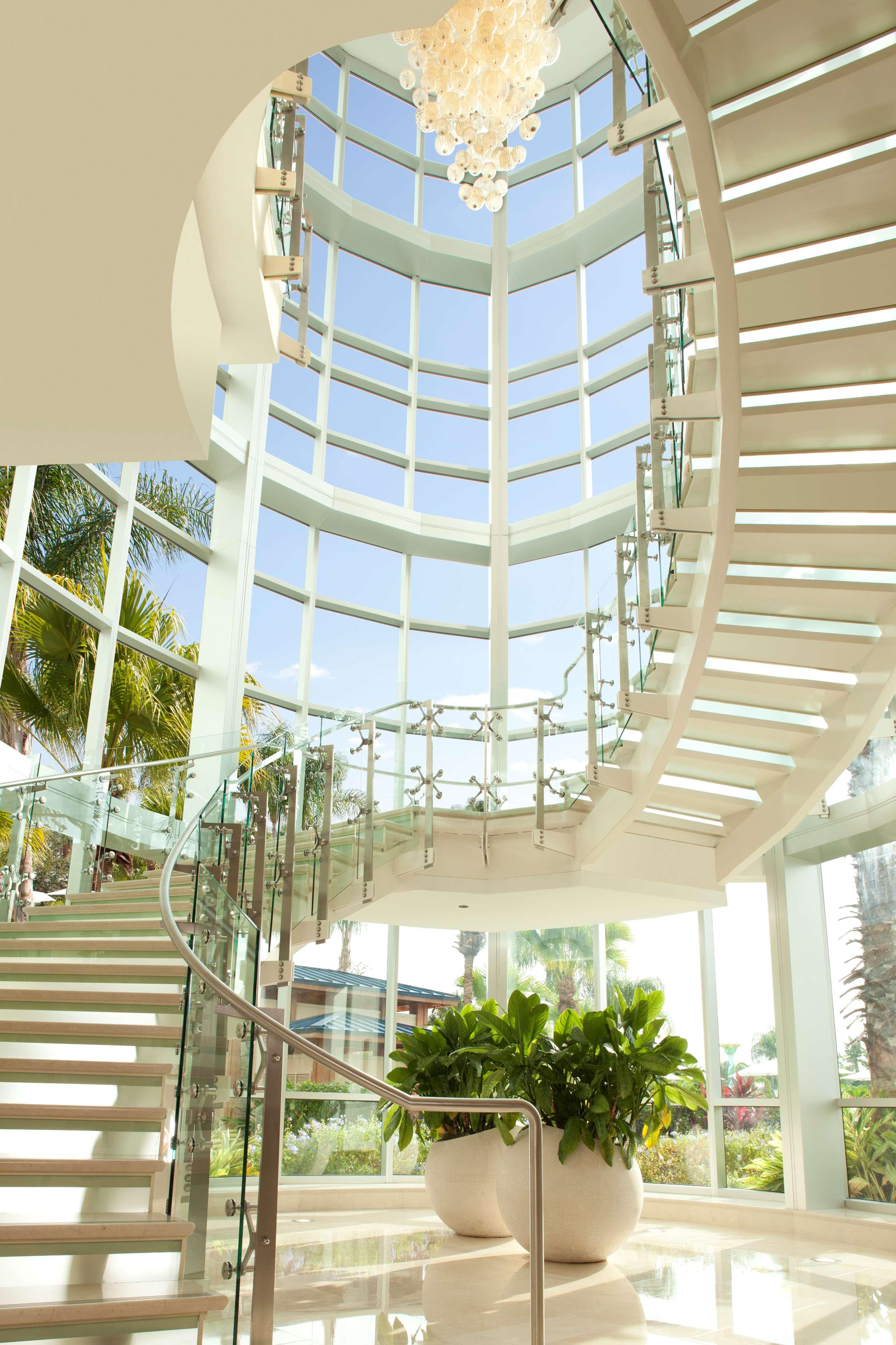 Hilton Orlando image 7
