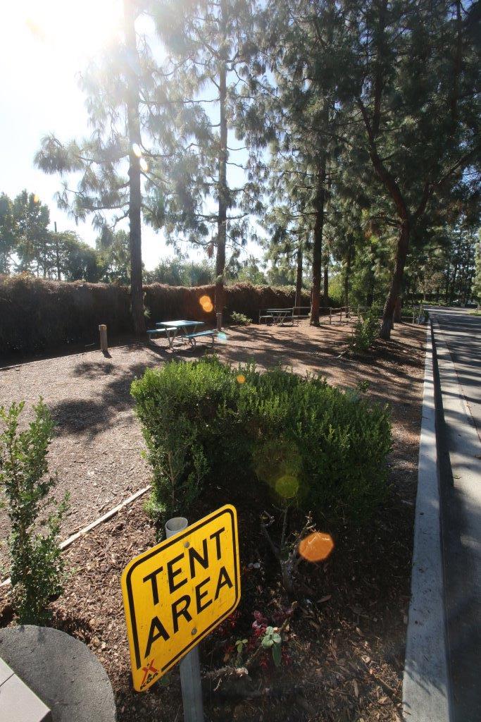 Los Angeles / Pomona / Fairplex KOA image 22