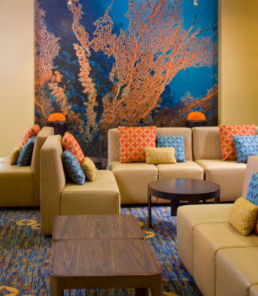 Courtyard by Marriott Fort Lauderdale Airport & Cruise Port image 18