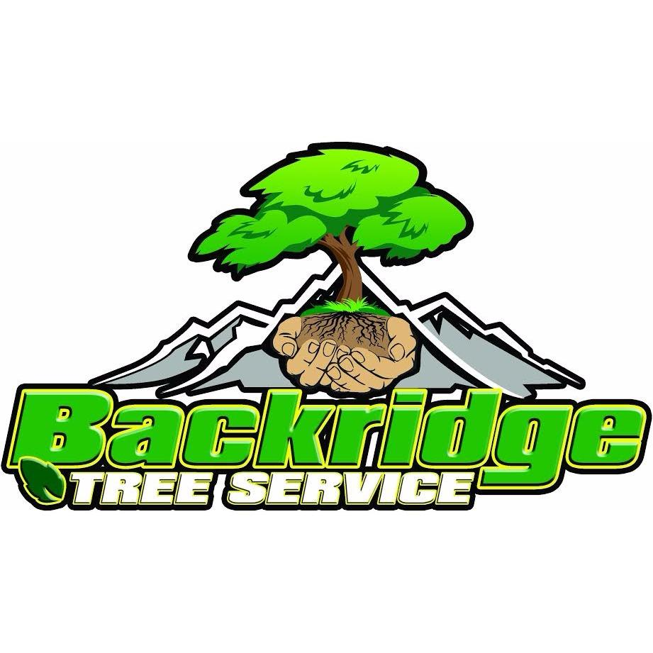 Backridge Tree Service image 7