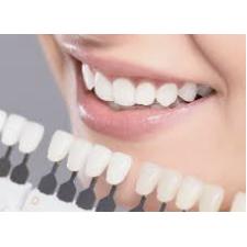 William K Chan Dentist P.C.