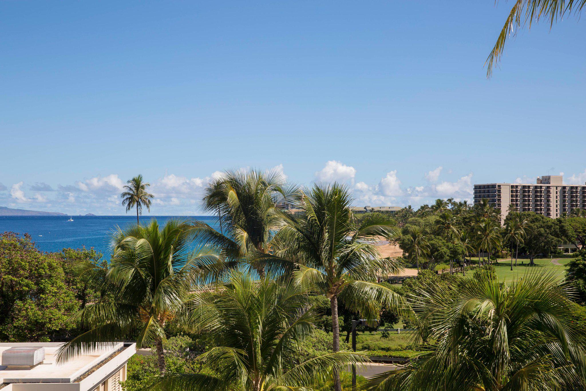 Sheraton Maui Resort & Spa in Maui, HI, photo #28