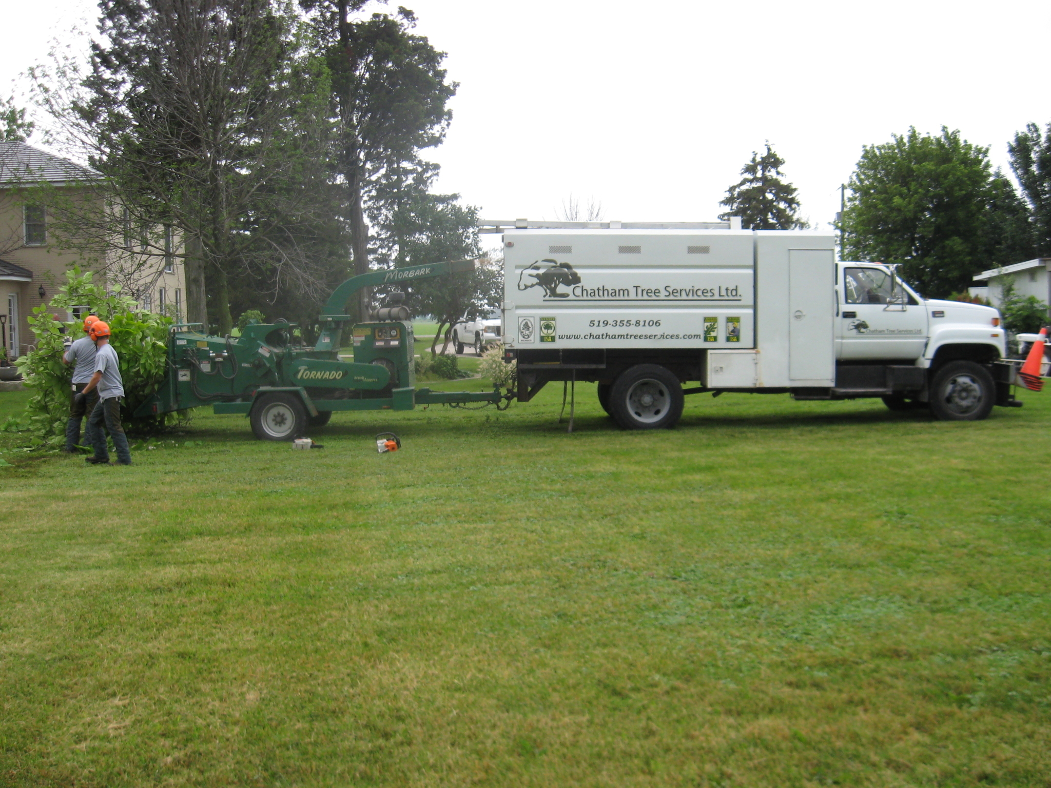 Chatham Tree Services Ltd in Chatham