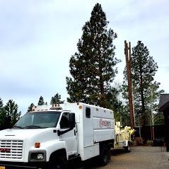 Central Oregon Tree Experts image 25