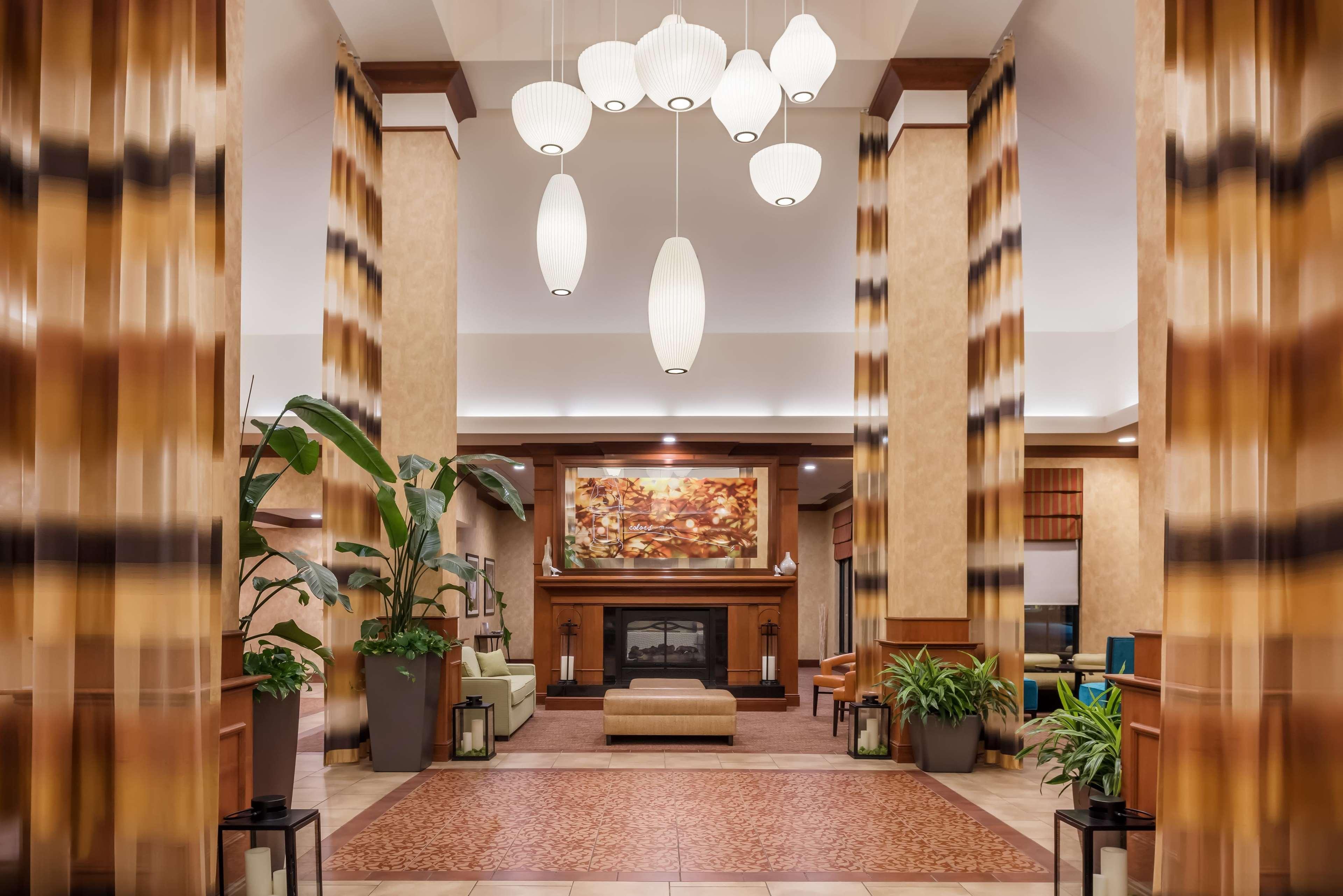 Fine Hilton Garden Inn St Augustine Beach Elaboration - Brown Nature ...