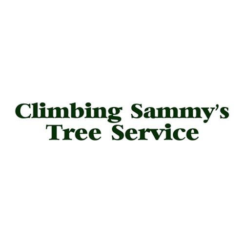 Climbing Sammy's Tree Service