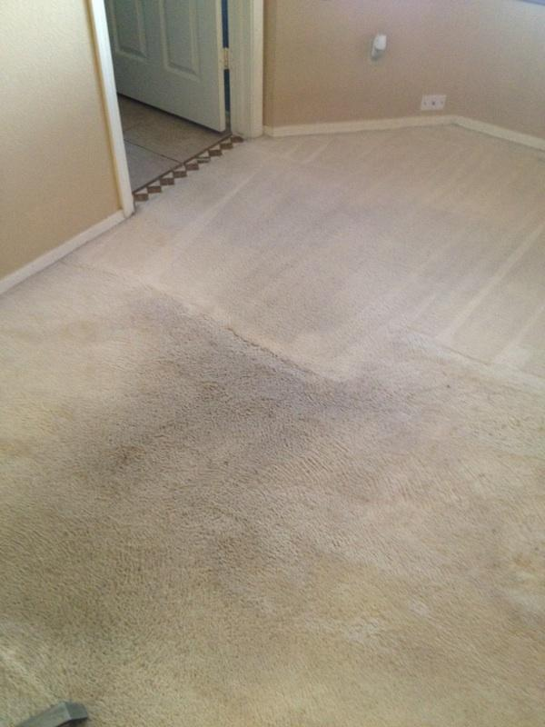 GCS Carpet Tile & Grout Cleaning image 3